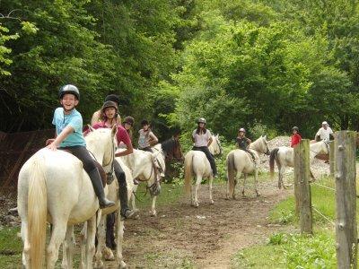 TRAC Terapies i Rutes Amb Cavalls