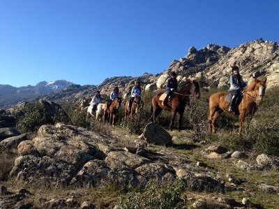 Horse Ride with theory class in La Pedriza 1 h