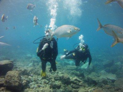 WindBlue Diving