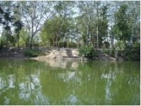 Our  fishing pond