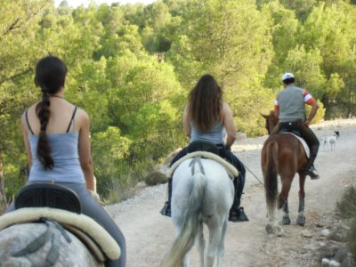 MTB Ride and Horseback Riding in Cofrentes