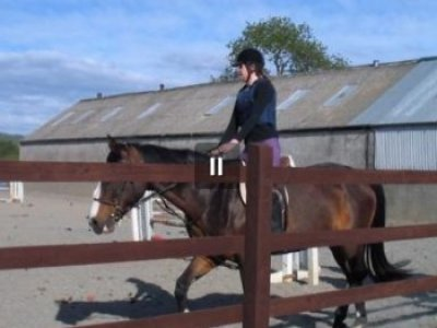 Group Horse Riding Lessons Londonderry