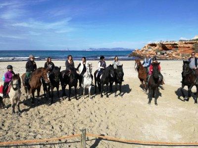 Ride a Horse in Formentera 1 Hora