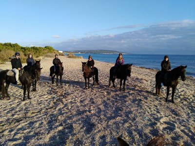 Stroll by Horse in Formentera Sunset