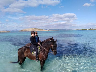 Excursion By Horse Through The Illetas Beach