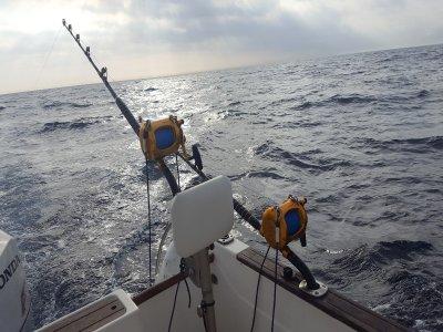 Fishing in Huelva w. Different Modalities, 4h
