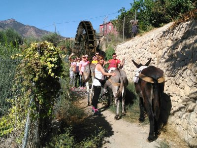 2-Hour Hiking Route with Donkey in Murcia