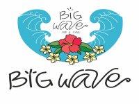 Big Wave Surf School & Surfcamp Paddle Surf