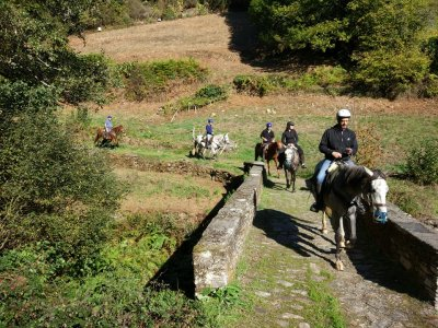 2h Horseback Excursion in A Fonsagrada