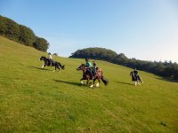 Cross-country with Freerein Riding Holidays
