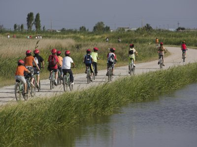 Tour Delta del Ebro Park w. Bike Route, 5h