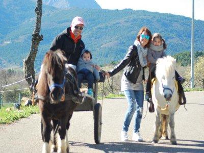 Family Activity w. Pony Ride in Voznuevo