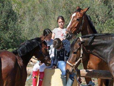 Horse Riding Camp Half a Day, 1 Week, Mallorca