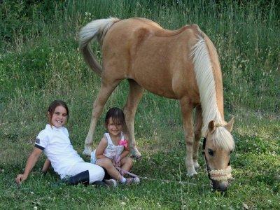 Equestrian Camp Mallorca, Full-Day, 1 Week