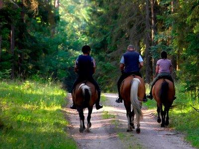 Burventura Grupo The Fantasy Rutas a Caballo