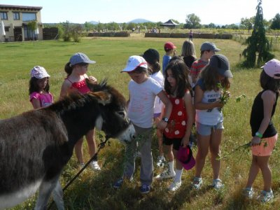 7-Days English Camp in Sabinares