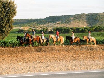 Caballos de Simancas