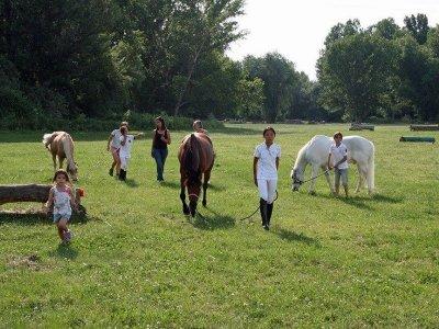 Urban Camp w. Horses, Bunyola - Single Day