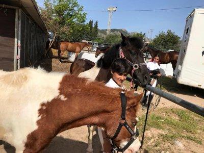 Horseback ride tour Sierra de Tramuntana, 1 Hour
