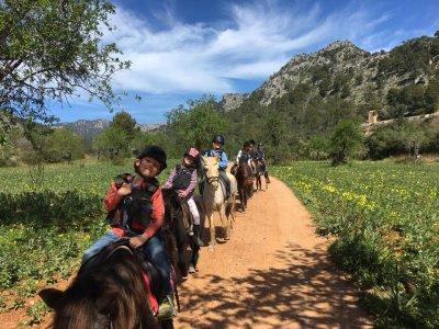Horse riding tour Sierra Tramuntana, Mallorca, 2 H