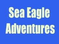 Sea Eagle Adventures Boat Trips