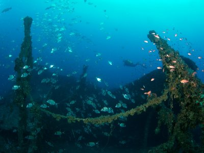 Remember Immersion Scuba Diver, San José de Níjar