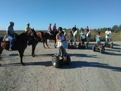 Horse riding tour in Pinar de El Rompido, 90 min