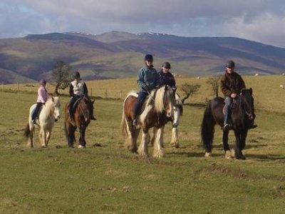 Pony and Quad Treks