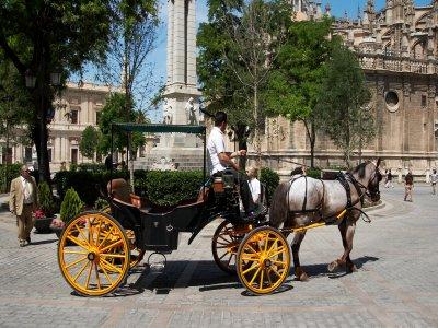 Arte Andaluz Paseos en Carro