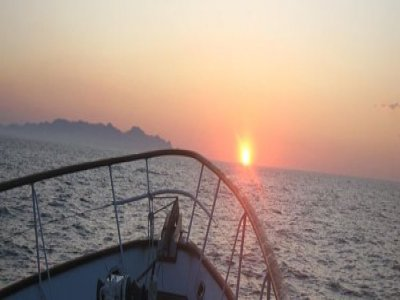 Southwest Powerboating Boat Trips