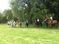 Pony treks