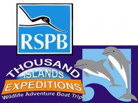 Ramsey Island RSPB Nature Reserve Boat Trips