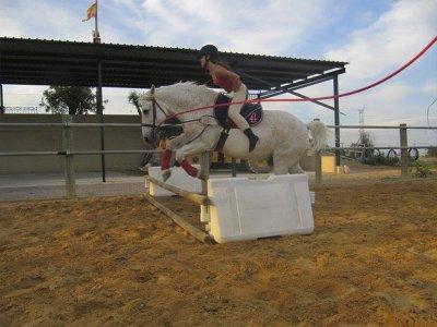 Cuadra Molí de Vent Clases de Equitación