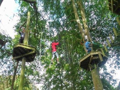 TreeTops Trail