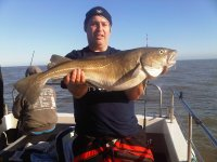 Big winter Cod