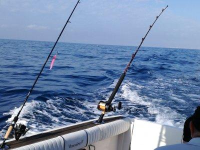 Bottom Fishing Trip in Alicante