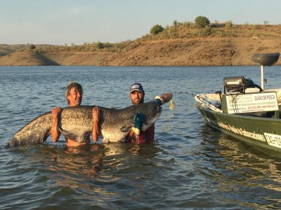 Catfish fishing trip in Alcántara