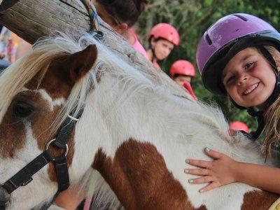 Equestrian workshops for schools in La Garrocha