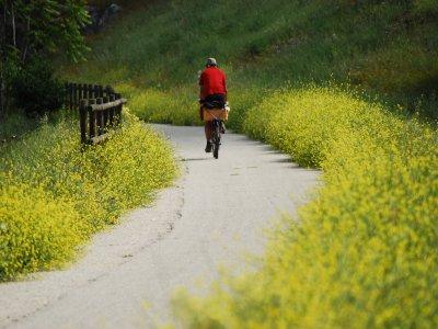 Explore Via Verde del Aceite route in 9 days