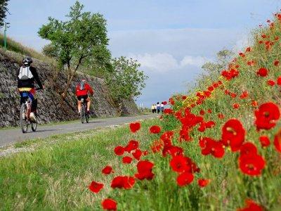Vía Verde Tajuña Bicycle 3 days Arganda del Rey
