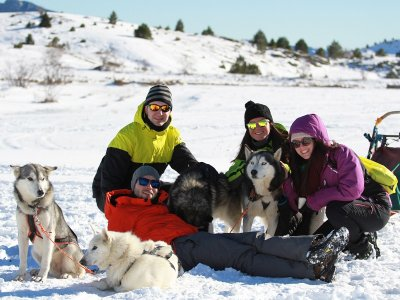 Dog Sledding with the Family in Formigal, 1h