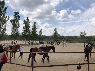Voucher 8 horse riding lessons in La Pedriza
