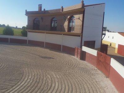 Capeas Villarrobledo