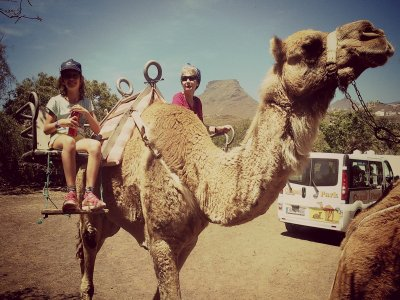 Camel Ride for Kids, South Tenerife, 20 min