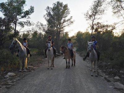 1h horse riding tour groups Bosque de la Marquesa