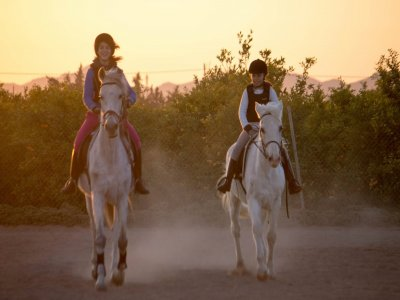 1 h horseback ride Cartagena photos and video