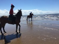 Beach Hacking with Horse Haven Riding School