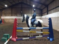 Dressage training at Horse Haven Riding School