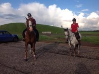 Have a go with Horse Haven Riding School