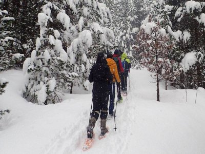 Snowshoes route 3 h in La Molina